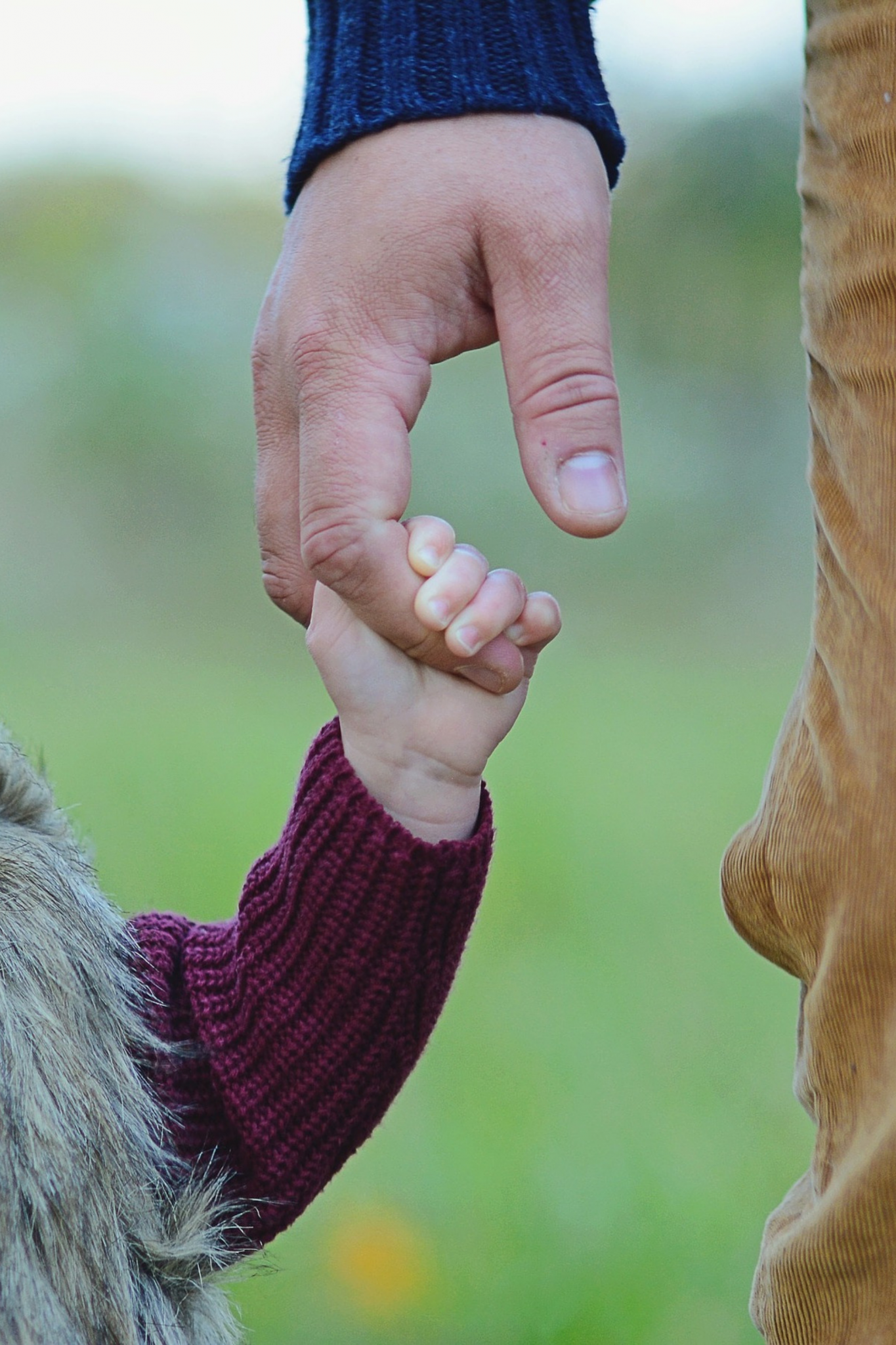 close up of a man holding a small child's hand